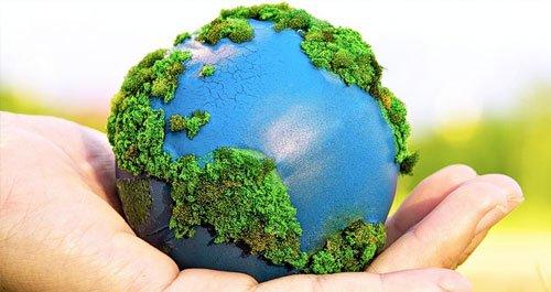 dia-mundial-del-medio-ambiente.jpg